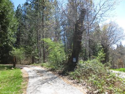 Nevada County Residential Lots & Land For Sale: 17030 Old Washington Road