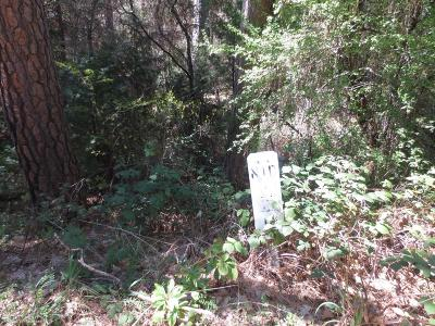 Nevada County Residential Lots & Land For Sale: 15148 Lewis Road