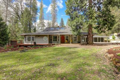 Nevada City Single Family Home For Sale: 17706 Blue Tent School Road