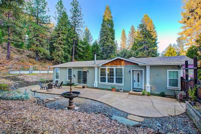 Nevada City Single Family Home For Sale: 12366 Pawnee Trail