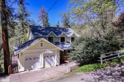 Nevada County Single Family Home For Sale: 20757 Tiger Tail Road