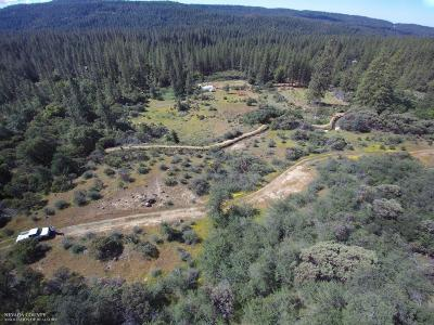 Nevada County Residential Lots & Land For Sale: 16447 State Hwy 20