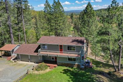 Grass Valley Single Family Home For Sale: 13407 Saffron Drive