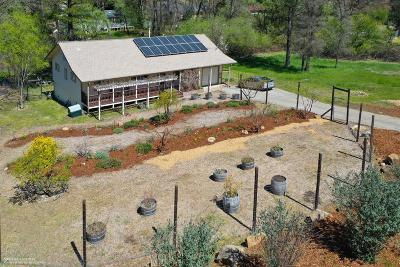 Grass Valley Single Family Home For Sale: 11288 Ball Road