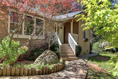 Grass Valley Single Family Home For Sale: 13106 Rattlesnake Road