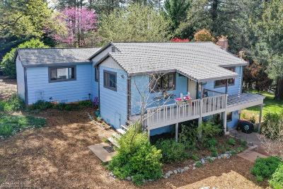 Grass Valley Single Family Home For Sale: 12165 McCourtney Road