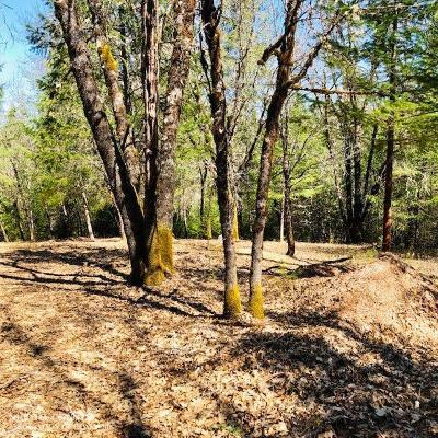 Grass Valley, Smartsville Residential Lots & Land For Sale: 16573 You Bet Road