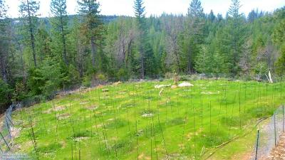 Nevada County Residential Lots & Land For Sale: 123 No Address Road
