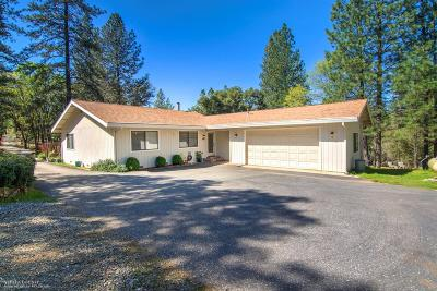 Grass Valley, Smartsville Single Family Home For Sale: 19729 Bow Valley Road