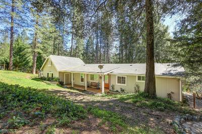 Nevada City Single Family Home For Sale: 12653 Willow Valley Road