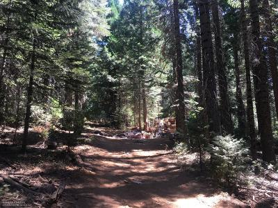 Nevada County Residential Lots & Land For Sale: 17845 Mobley Springs Road