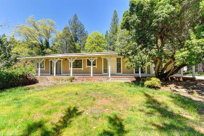 Grass Valley Single Family Home For Sale: 10272 Durbrow Road