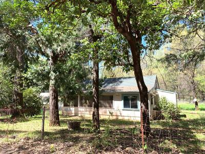 Grass Valley, Smartsville Single Family Home For Sale: 15710 Shebley Road