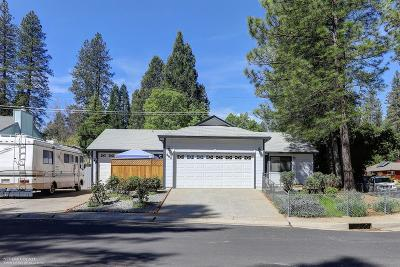 Grass Valley, Smartsville Single Family Home For Sale: 602 Penstock Drive