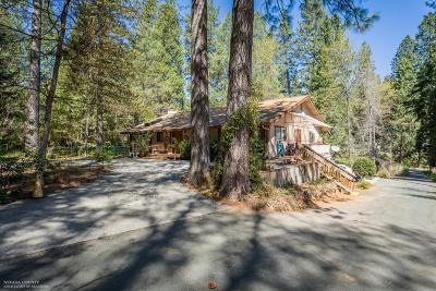 Grass Valley, Smartsville Single Family Home For Sale: 12825 Burma Road