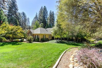Grass Valley, Smartsville Single Family Home For Sale: 12881 Chatsworth Lane