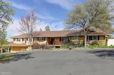 Grass Valley, Smartsville Single Family Home For Sale: 16067 Wolf Mountain Road