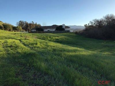 Ballard, Buellton, Los Alamos, Los Olivos, Santa Ynez, Solvang Residential Lots & Land For Sale: 1999 High Meadow Drive