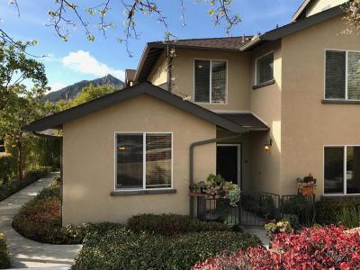 San Luis Obispo Single Family Home For Sale: 647 Paseo Bella Montana