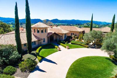 Single Family Home For Sale: 1015 Ladan Drive