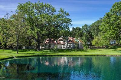 Santa Ynez Single Family Home For Sale: 7735 Happy Canyon