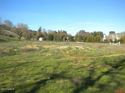 Ballard, Buellton, Los Alamos, Los Olivos, Santa Ynez, Solvang Residential Lots & Land For Sale: 985 Old Ranch Road