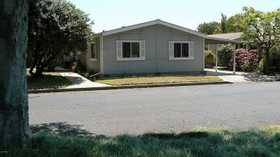 Santa Maria Single Family Home For Sale: 519 W Taylor Street #217
