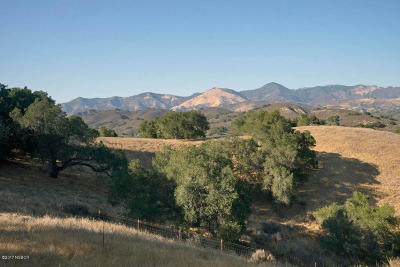 Santa Ynez Residential Lots & Land For Sale: 4213 Tims Road