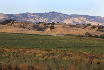 Ballard, Buellton, Los Alamos, Los Olivos, Santa Ynez, Solvang Residential Lots & Land For Sale: 4200 Roblar Avenue