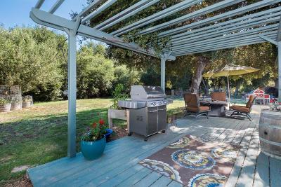 Solvang Single Family Home For Sale: 710 Ballard Canyon Road