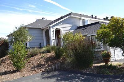 Solvang Single Family Home For Sale: 736 Hillside Drive