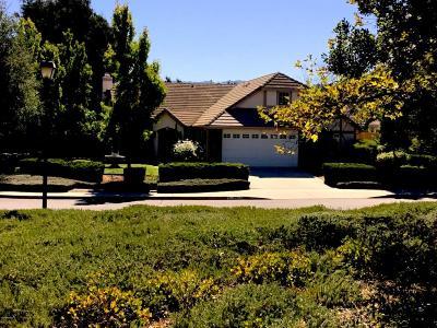 Solvang Single Family Home For Sale: 1994 Windmill Lane