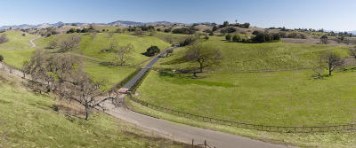 Los Olivos Single Family Home For Sale: 2930 Bramadero Road