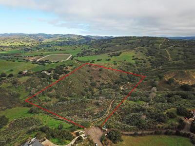 Ballard, Buellton, Los Alamos, Los Olivos, Santa Ynez, Solvang Residential Lots & Land For Sale: 1095 Viendra Drive