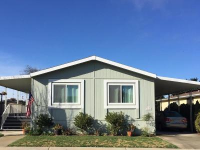 Santa Barbara County Single Family Home For Sale: 1650 E Clark Avenue #242