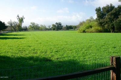 Los Olivos Residential Lots & Land For Sale: 2389 Alamo Pintado Road