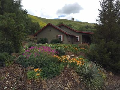 Solvang Single Family Home For Sale: 596 Ranch Road