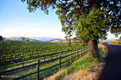 Santa Ynez Residential Lots & Land For Sale: 1575 Alisos Avenue