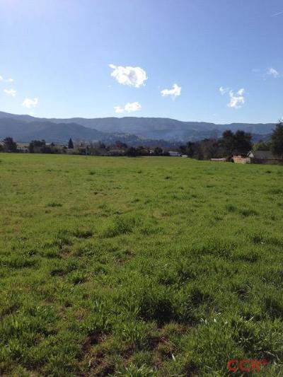 Santa Ynez Residential Lots & Land For Sale: 3185 Highway 246 #Par B