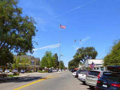 Los Olivos Residential Lots & Land For Sale: 2455 Grand Avenue