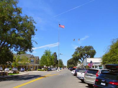 Ballard, Buellton, Los Alamos, Los Olivos, Santa Ynez, Solvang Residential Lots & Land For Sale: 2455 Grand Avenue