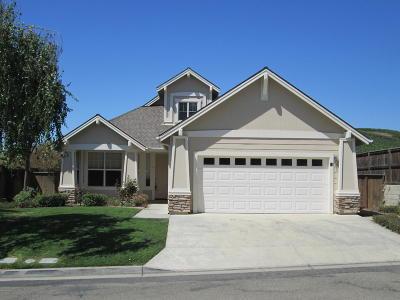 Buellton, Los Alamos, Los Olivos, Santa Ynez Single Family Home For Sale: 11 Chamiso Drive