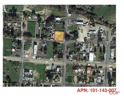 Ballard, Buellton, Los Alamos, Los Olivos, Santa Ynez, Solvang Residential Lots & Land For Sale: 285 Leslie Street