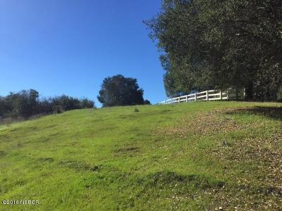 Ballard, Buellton, Los Alamos, Los Olivos, Santa Ynez, Solvang Residential Lots & Land For Sale: 785 B Fredensborg Cyn Road