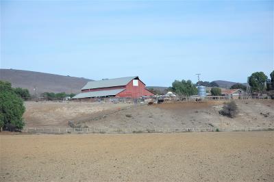 Ballard, Buellton, Los Alamos, Los Olivos, Santa Ynez, Solvang Residential Lots & Land For Sale: 1050 Hwy 246