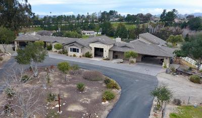 Single Family Home For Sale: 853 Via Esmeralda