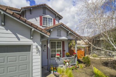 Buellton, Los Alamos, Los Olivos, Santa Ynez Single Family Home For Sale: 27 Henry Court