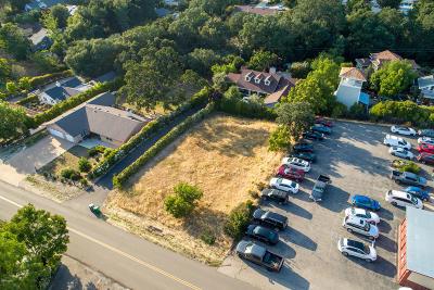 Ballard, Buellton, Los Alamos, Los Olivos, Santa Ynez, Solvang Residential Lots & Land For Sale: 3523 Sagunto Street