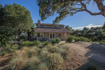 Santa Ynez Single Family Home For Sale: 4145 Woodstock Road