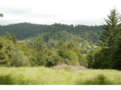 Santa Cruz County Residential Lots & Land For Sale: 0 Sundance Hill Rd
